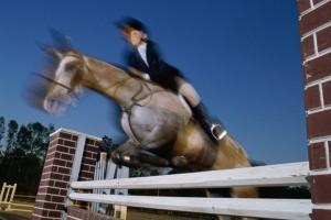 Anna Baker Horsemanship