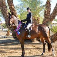 Archway Equestrian Sports